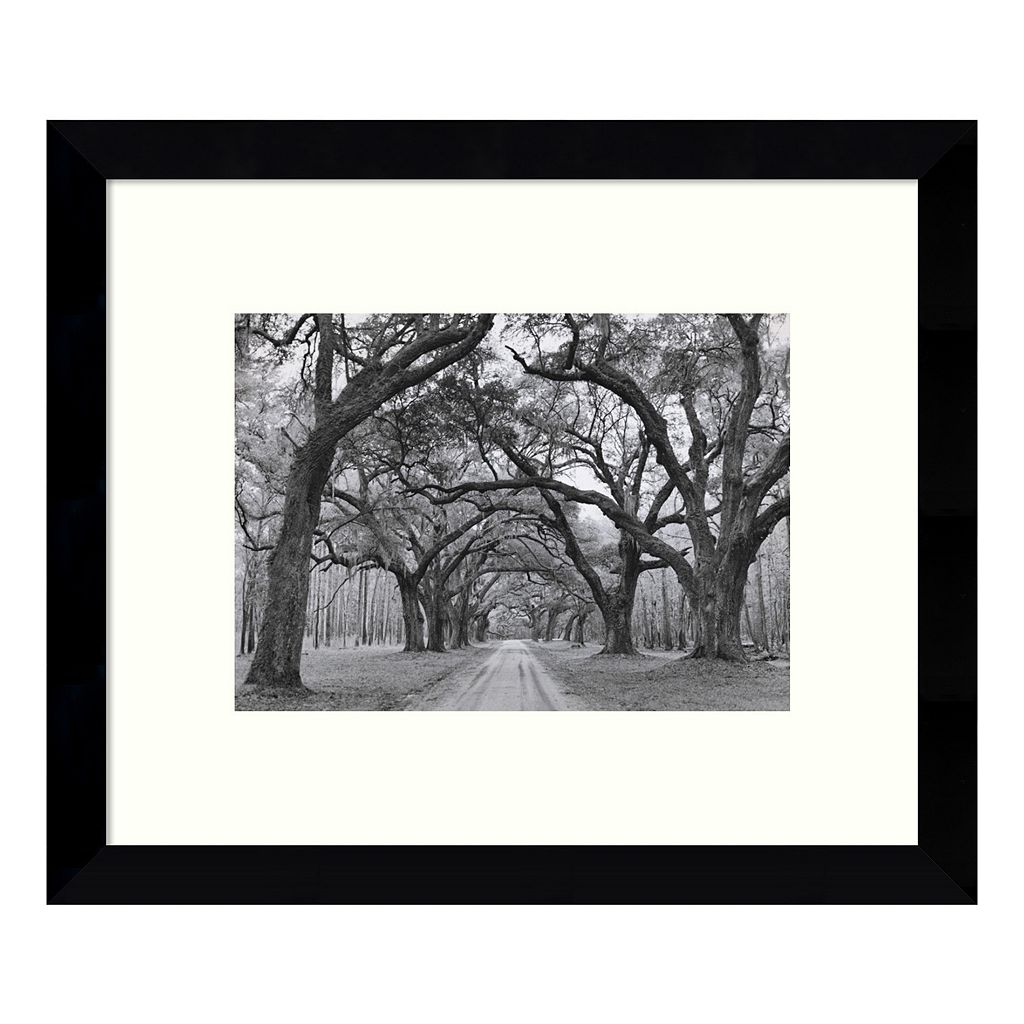 Oak Arches Framed Wall Art