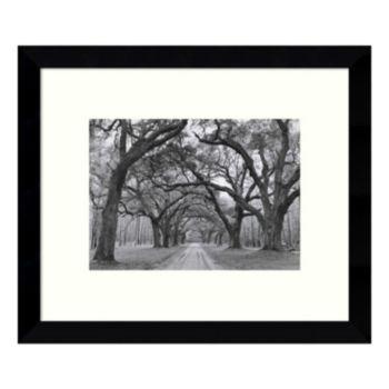 Oak Arches Framed Wall Art