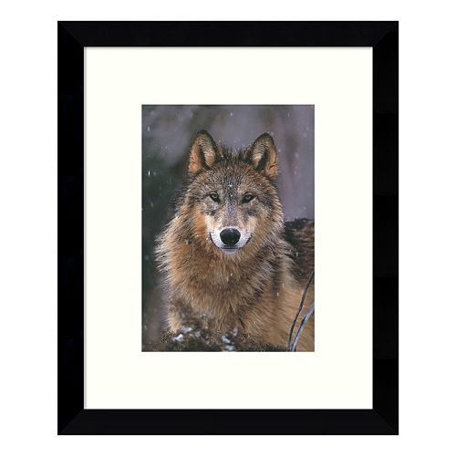 Woodland Pride Montana Wolf Framed Wall Art