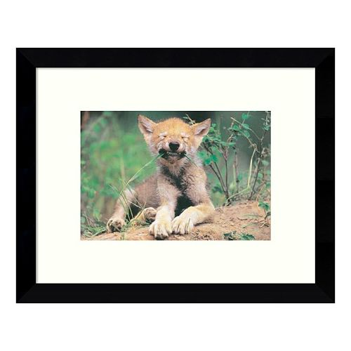 Simple Pleasures Young Wolf Framed Wall Art