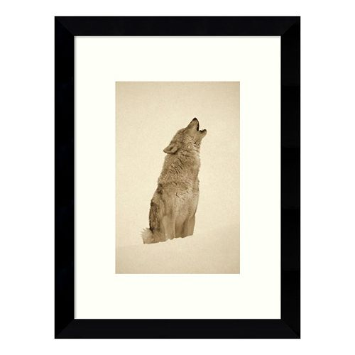 Timber Wolf Howling in the Snow Framed Wall Art