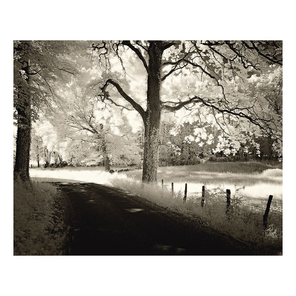 Around The Bend Canvas Wall Art
