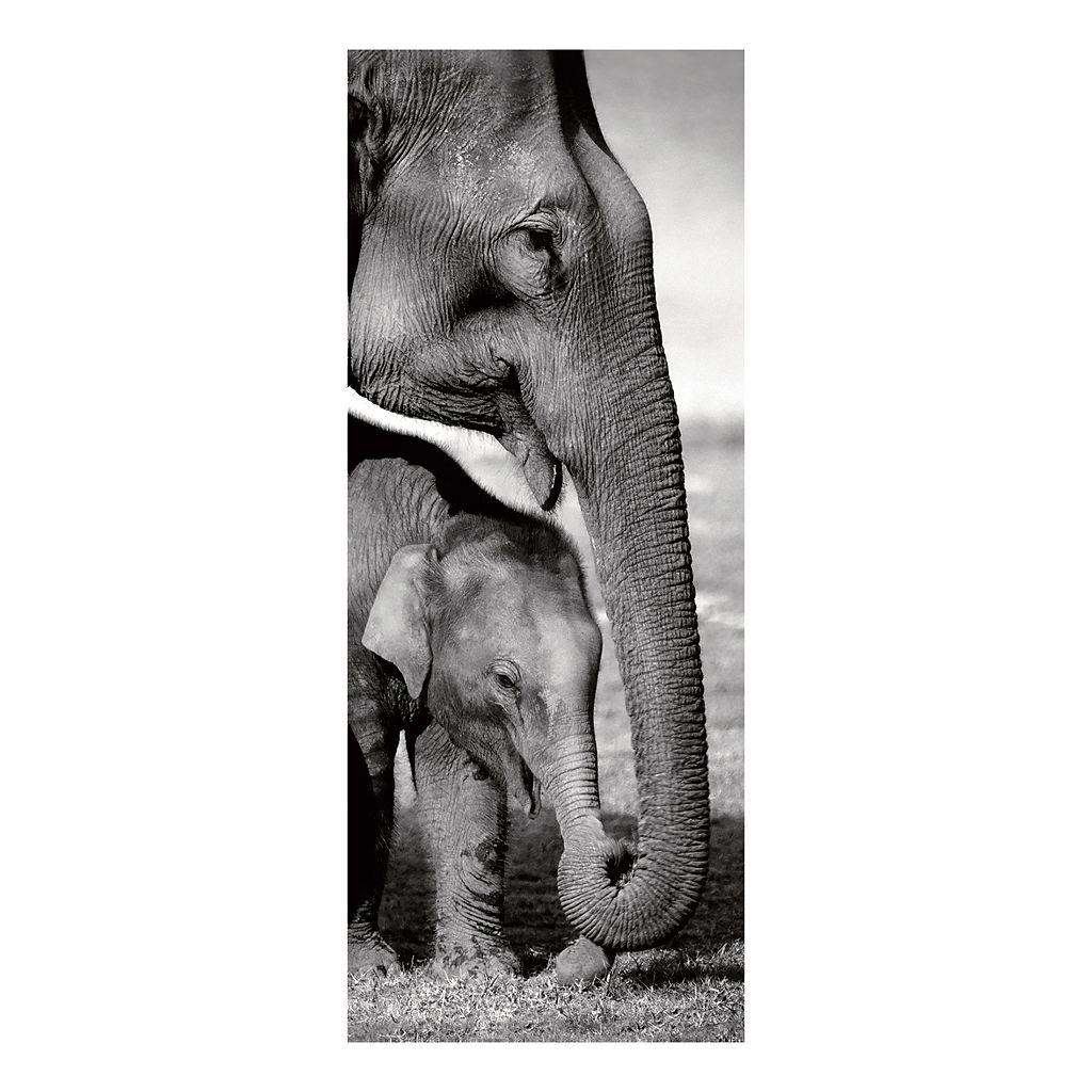 Indian Elephants Canvas Wall Art