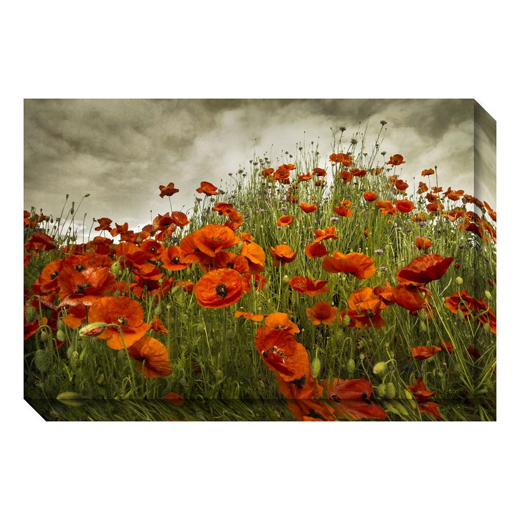 Bobbi's Poppies Canvas Wall Art