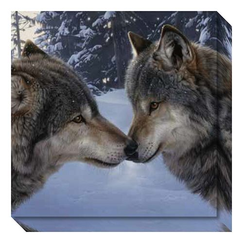 Muzzle Nuzzle Wolves Canvas Wall Art
