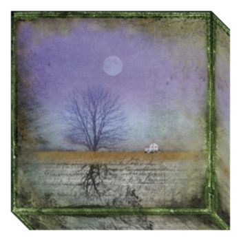 Moonlight in Vermont Canvas Wall Art