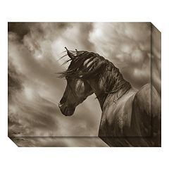 Amanti Art The Renegade Horse Canvas Wall Art