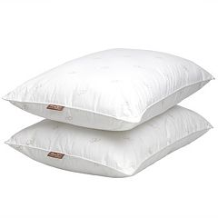 Panama Jack 2-pack Cotton Luxury Pillow