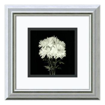 Amanti Art Flower Series IX Print Framed Wall Art