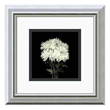 Amanti Art Flower Series IX Print Framed Wall Art