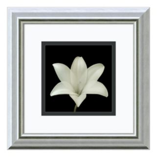 Amanti Art Flower Series VII Print Framed Wall Art