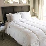Nikki Chu MicronOne Comforter