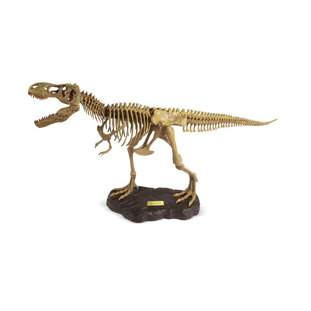 Geoworld Dr. Steve Hunters Paleo Expeditions Kit - T. Rex Dinosaur