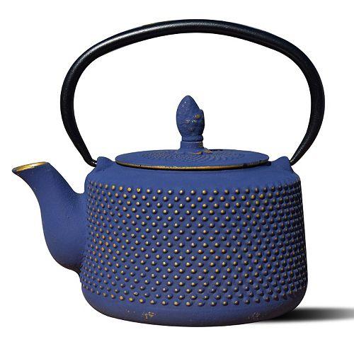 Old Dutch Cast-Iron Matsukasa Teapot