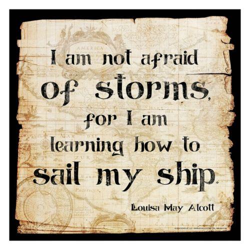 Art.com Not Afraid Of Storms...