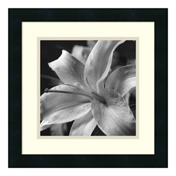Amanti Art Pure Lily Framed Wall Art