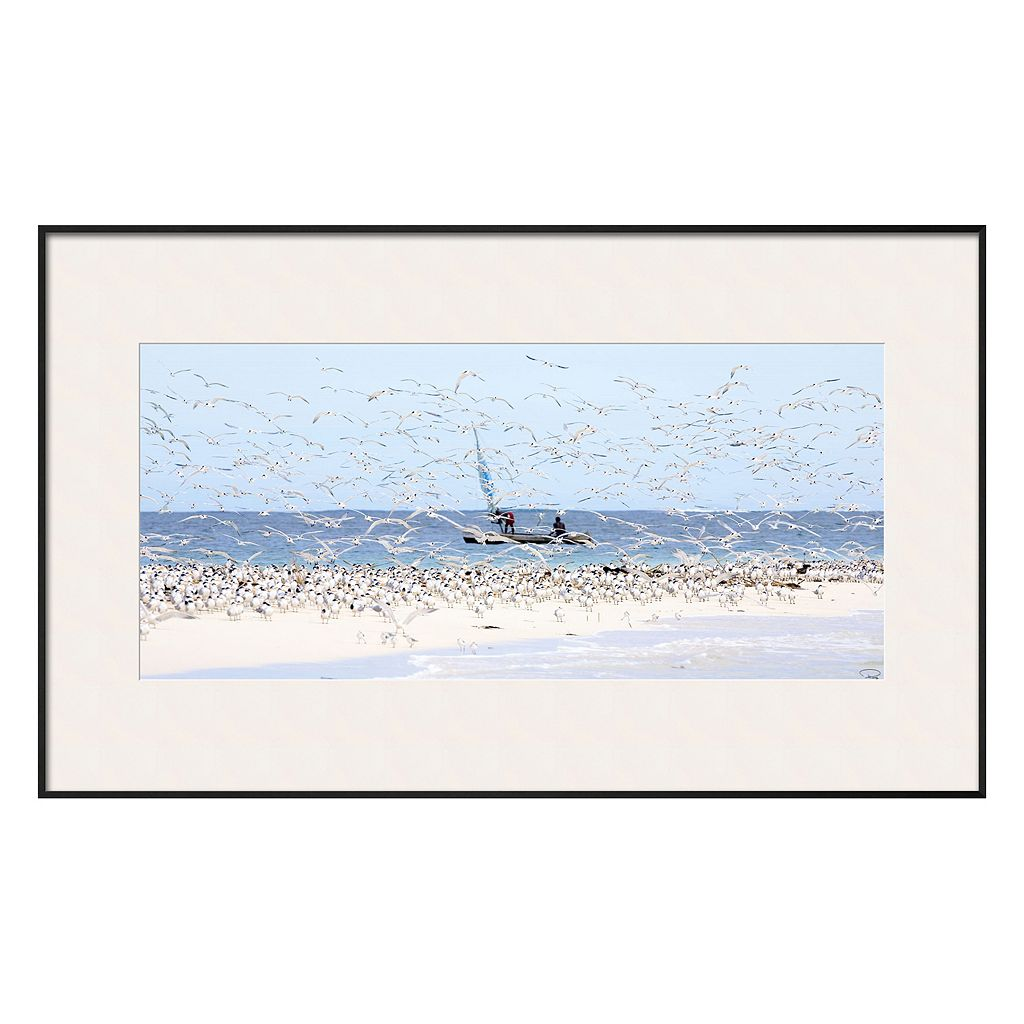 Art.com Madagascar Seabirds Framed Wall Art
