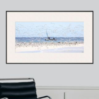 Art.com Madagascar Seabirds Framed Wall Art