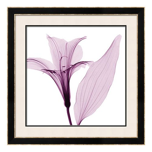 Art.com Alstromeria III Framed Wall Art