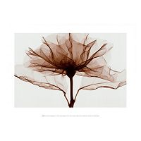 Art.com A Rose I Wall Art Print