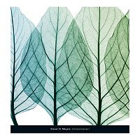 Art.com Celosia Leaves I Wall Art Print