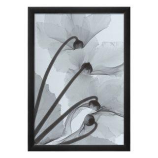 Art.com Cyclamen Study IV Framed Wall Art