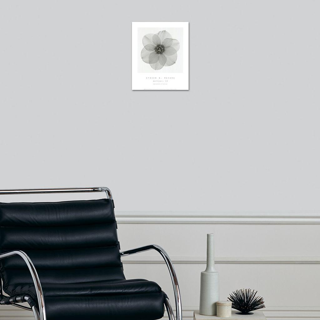 Art.com Daffodil II Wall Art Print