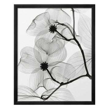 Art.com Dogwood Blossoms Positive Framed Wall Art