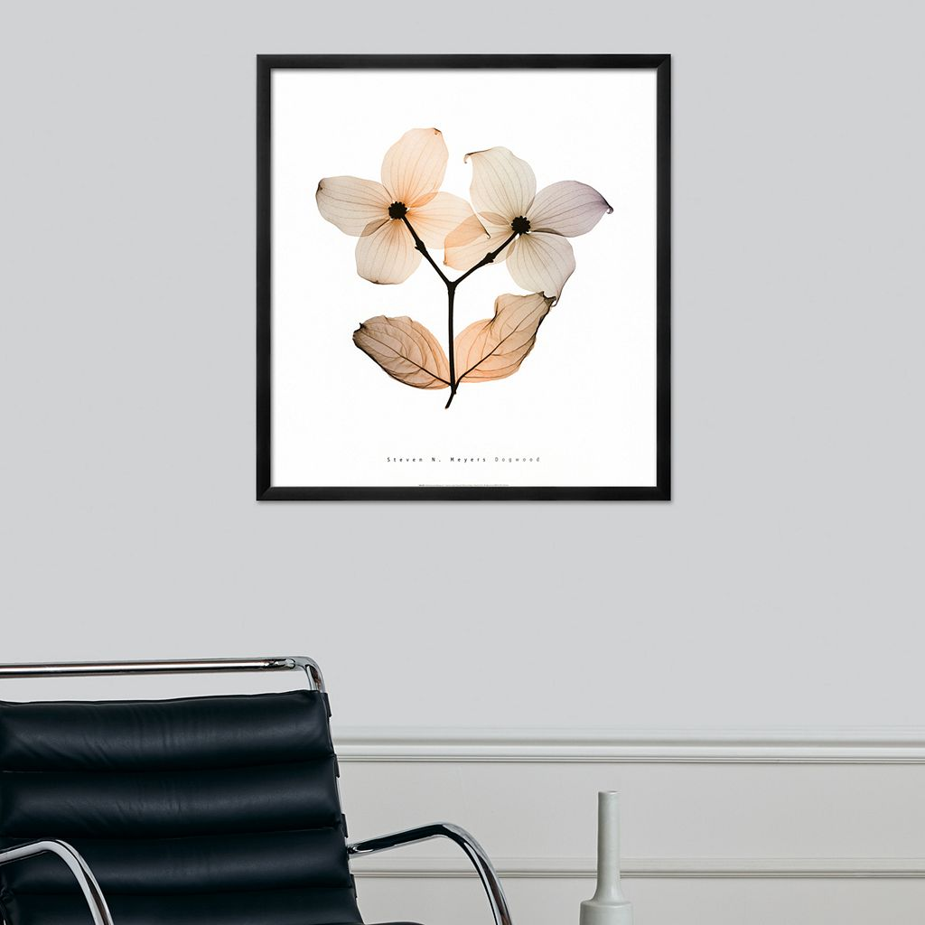Art.com Dogwood I Framed Wall Art