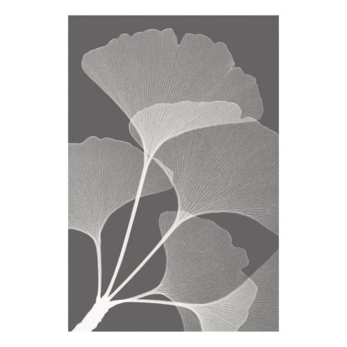 Art.com Ginkgos II Wall Art Print