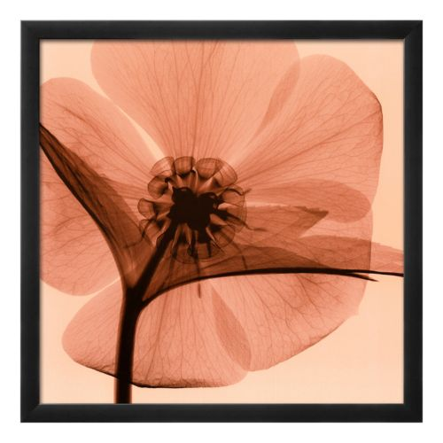 Art.com Hellebore I Framed Wall Art