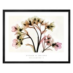 Art.com Hellebore II Framed Wall Art