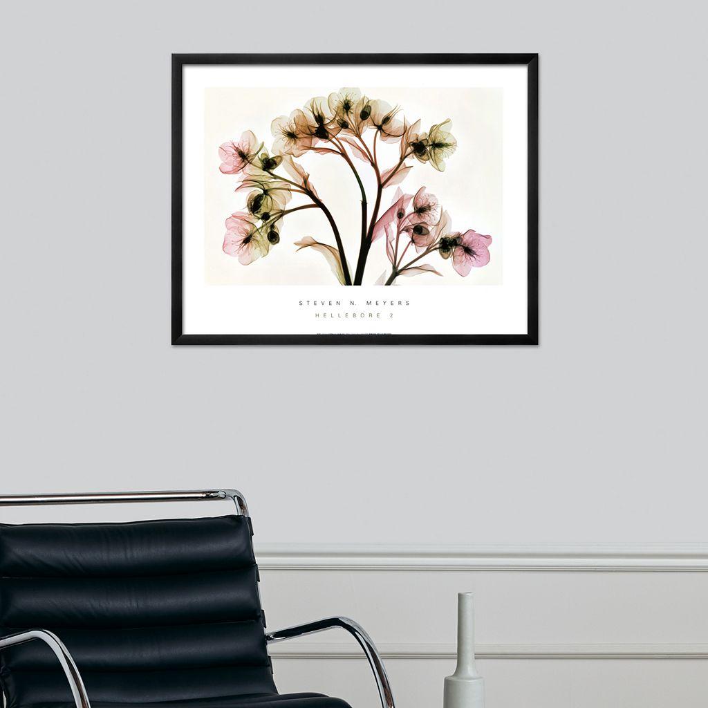 Art.com Hellebore II Framed Wall Art