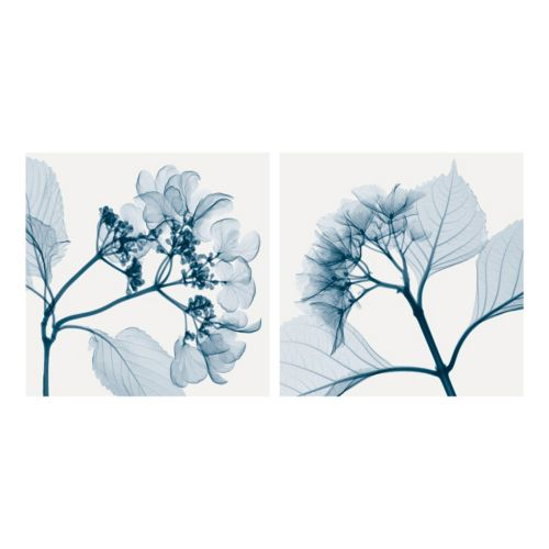 Art.com Hydrangeas Wall Art Print