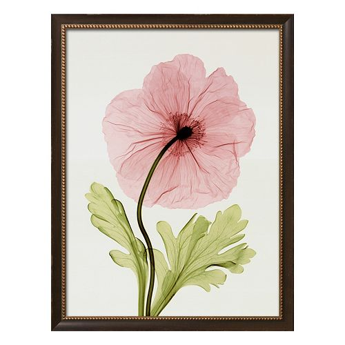 Art.com Iceland Poppy I Framed Wall Art