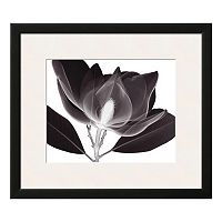 Art.com Magnolia Framed Wall Art