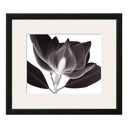 Art.com Magnolia Framed Wall Art