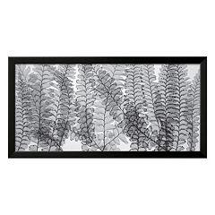 Art.com Maidenhair Ferns Framed Wall Art