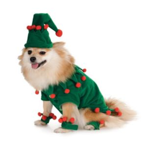 Pet Elf Costume