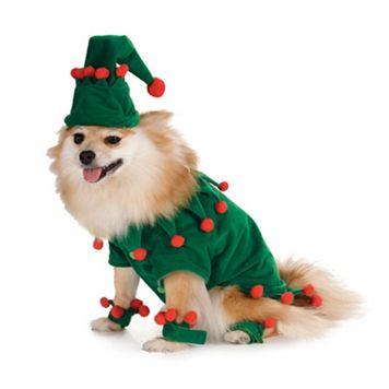 Pet Elf Costume