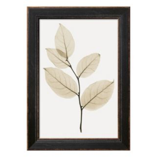 Art.com Salal Framed Wall Art