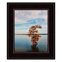 Cypress In Autumn 1 Framed Wall Art