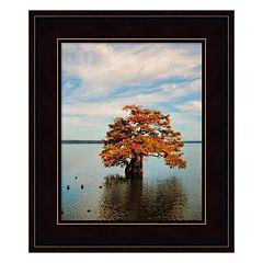 Cypress In Autumn 2 Framed Wall Art