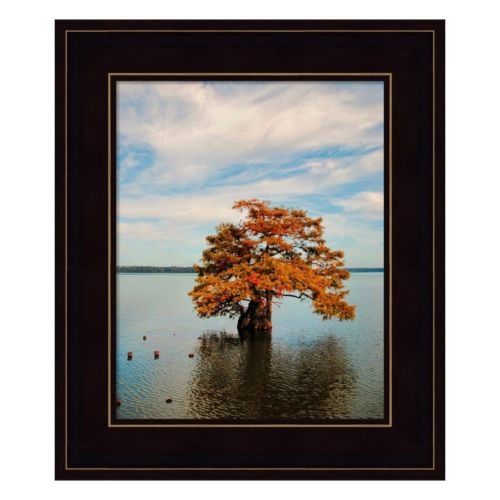 Cypress In Autumn 2 Framed Wall Art