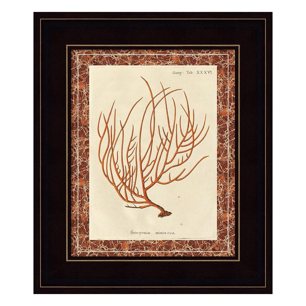 Gorgonia Miniacea Marble Framed Wall Art