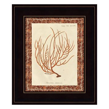 Gorgonia Miniacea Marble Framed Wall Art