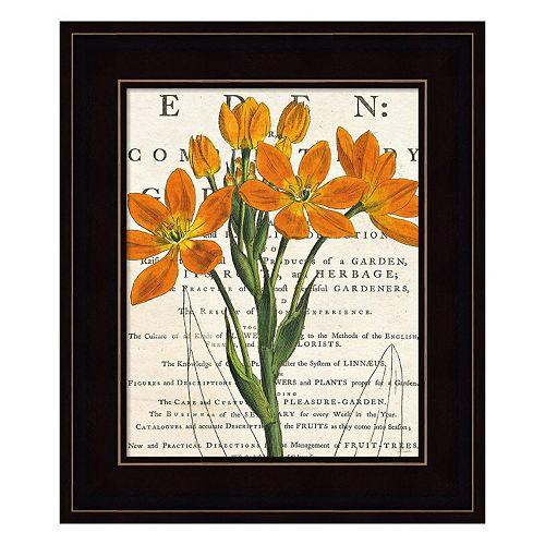 Euphorbia Botany Framed Wall Art