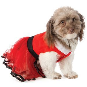 Pet Santa's Sweetie Costume