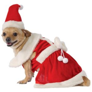 Pet Mrs. Claus Costume