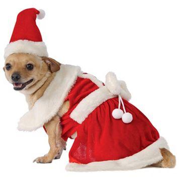 Pet Mrs. Claus Costume